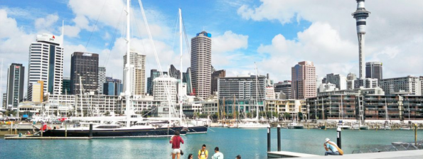 office movers Auckland- Announce Your Business Is Moving