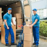 office movers auckland background